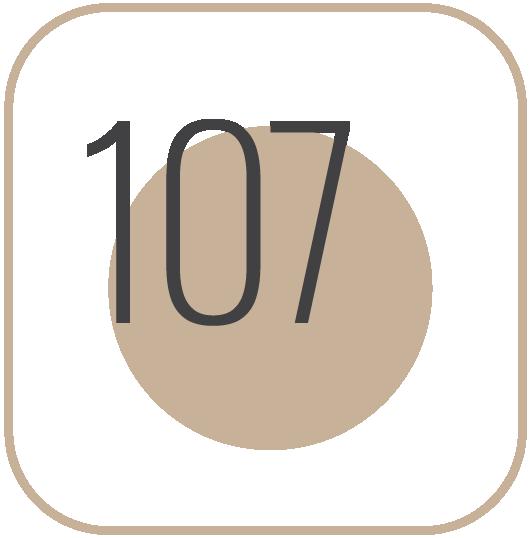 Icono-Hab-107